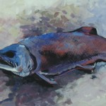 robs-fish_3026